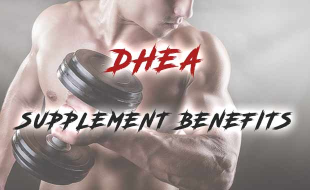 DHEA Supplement Benefit